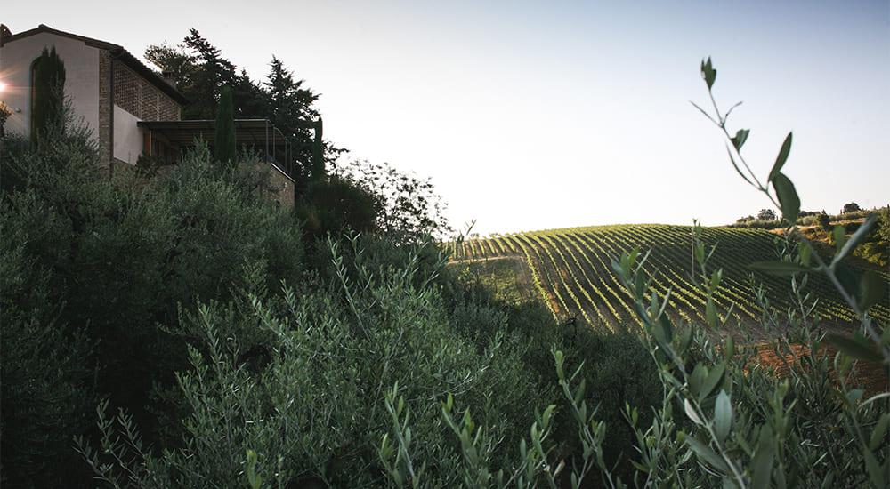 Fabulous Tuscany