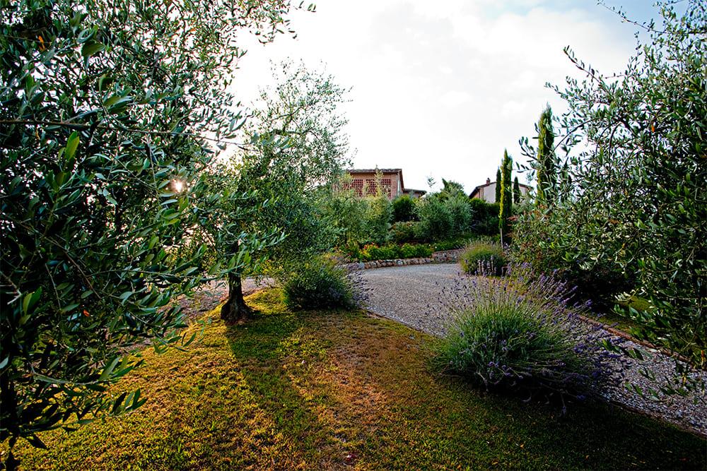 Traumhafte Toskana4